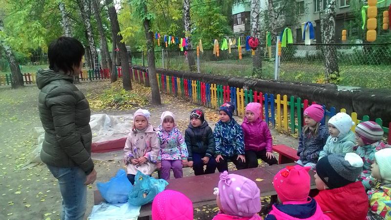 Фото: Дошкольники познакомятся с аграрными профессиями