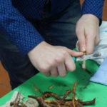 В объединениях Старожиловского района прошли открытые занятия