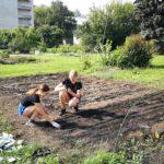 В Детском эколого-биологическом центре продолжается «Трудовое лето»