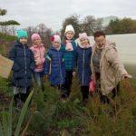 В парке «Доступная природа» провели акцию «Живи лес»