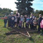 Обучающиеся Детского эколого-биологического центра стали дипломантами Всероссийского конкурса «Волонтеры могут все»