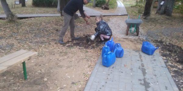 Осенние работы в дендрарии Детского эколого-биологического центра