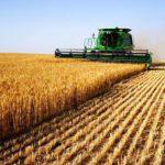Мой выбор –сельское хозяйство