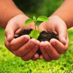 Принимаются заявки на конкурс «Агростарт»