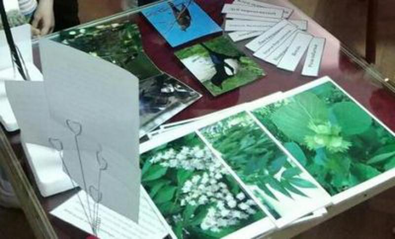 Фото: Детский эколого-биологический центр поучаствовал в проведении ночи музеев