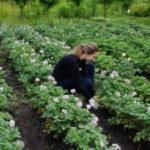 В Детском эколого-биологическом центре стартовало «Трудовое лето»