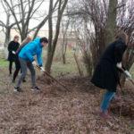 Волонтеры помогли в обустройстве территории Детского эколого-биологического центра
