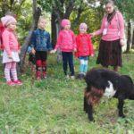 В Детском эколого-биологическом центре стартовала образовательная программа для дошкольников