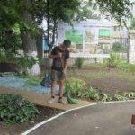 В эколого-биологическом центре продолжается реализация проекта «Трудовое лето»