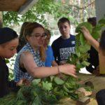 В оздоровительном лагере «Мещера» работает Летняя  школа естественно-научного и социального проектирования