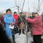 Прошёл весенний семинар по обрезке плодовых деревьев