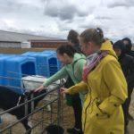 Экскурсия для обучающихся агрокласса на животноводческий комплекс «ЭкоНива» в рамках сетевого образовательного проекта «Агрошкола»