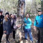 Сбор природного материала для парка «Доступная природа»