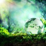 Приглашаем принять участие в областной акции «День Земли»