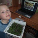 Дистанционное обучение в объединении «Юный фермер»  для дошкольников