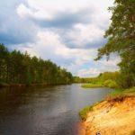 Интересные факты из мира природы: Природа Рязанского края