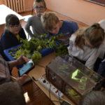 Сотрудники Центра провели мастер –классы в Касимовском районе по Агрошколе