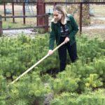 В Детском эколого-биологическом центре завершилась экологическая акция «Неделя Рязанского леса»