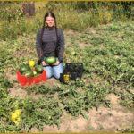 Итоги регионального этапа «Малая Тимирязевка»