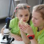 Увлекательный БиоМир в Детском эколого-биологическом центре
