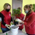 В детском эколого-биологическом центре состоялась акция по высадке мандариновых деревьев