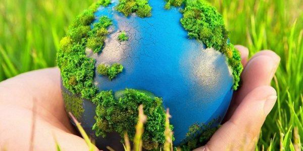 Подведены итоги регионального этапа Всероссийского детского экологического форума «Зеленая планета 2021»
